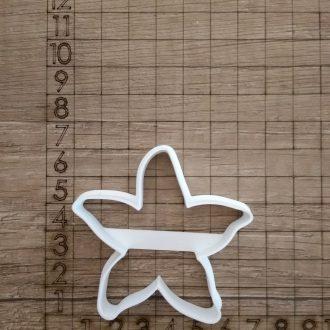 Formička- Morská hviezdica