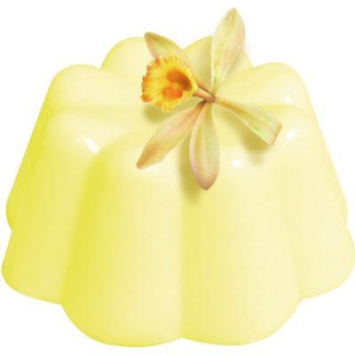 puding-vanilka